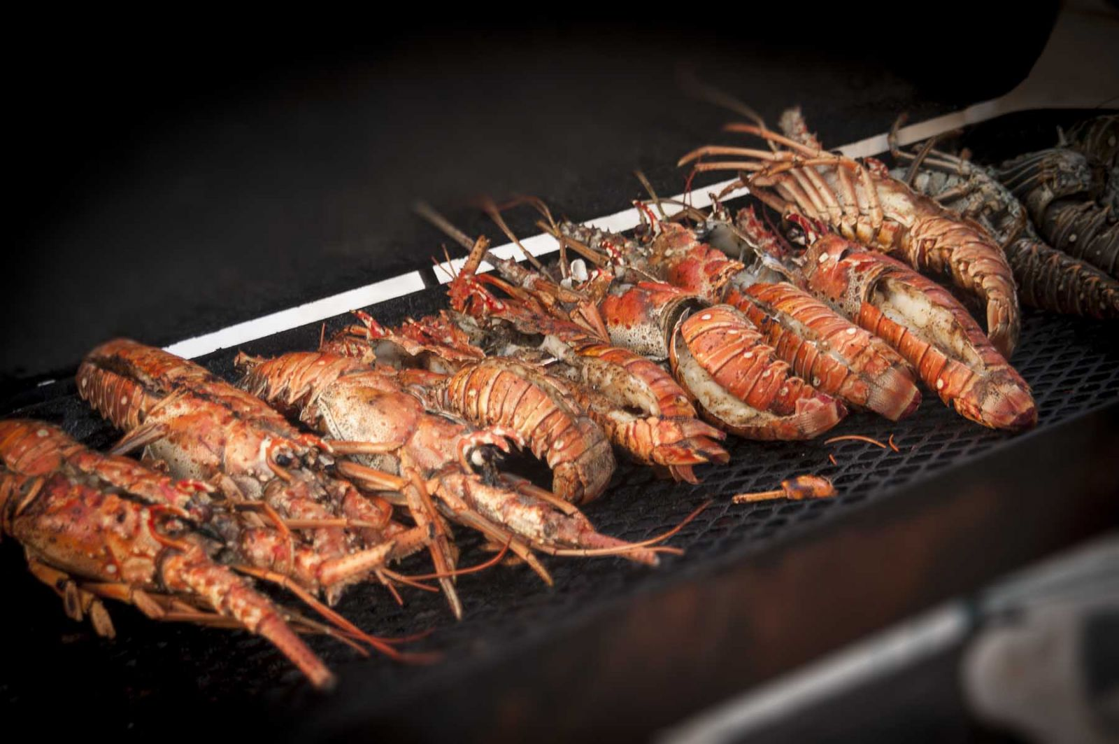 Seafood on Grill at Destin Seafood Festival
